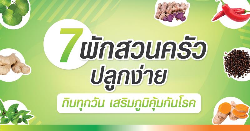 7 ผักสวนครัวปลูกง่าย กินทุกวัน เสริมภูมิคุ้มกันโรค