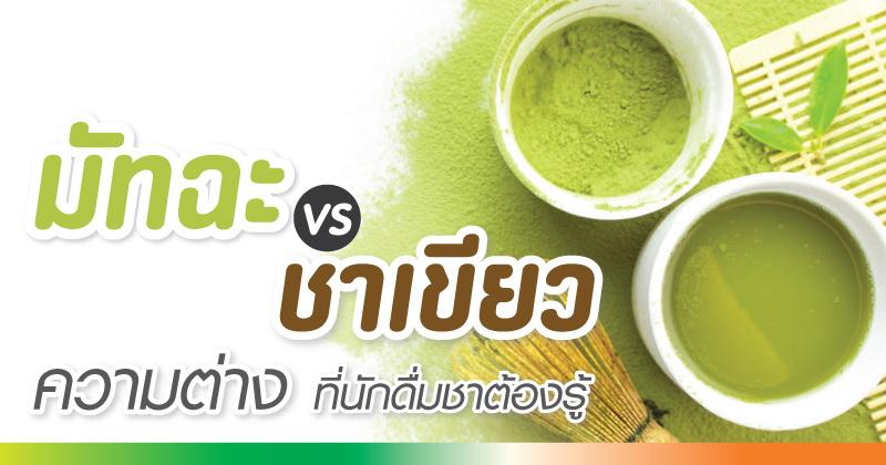 มัทฉะ & ชาเขียว ความต่างที่นักดื่มชาต้องรู้
